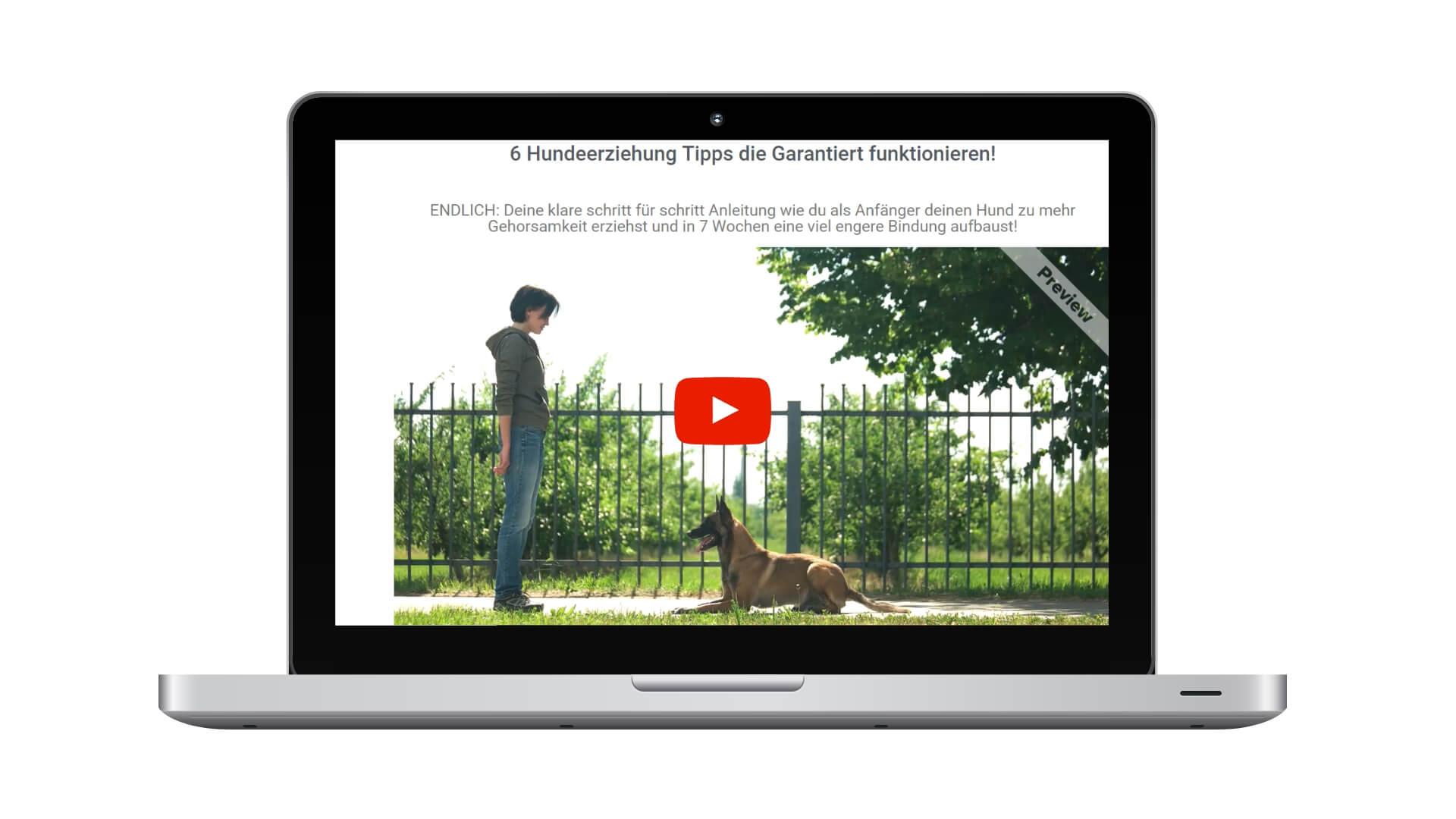 Online Hundeschule Tipps